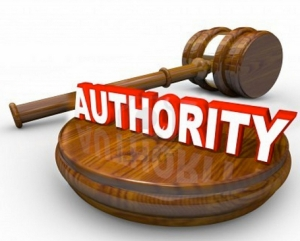 How To Make An Authority Site